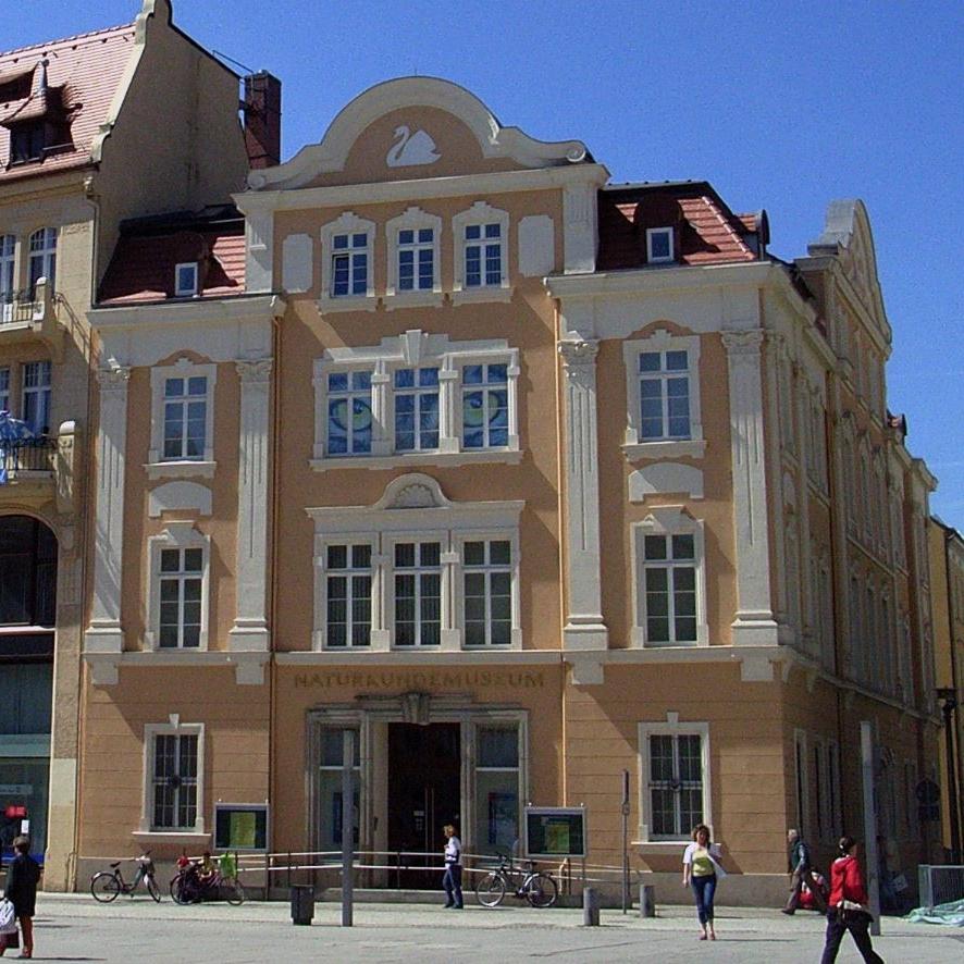 Senckenberg Museum für Naturkunde